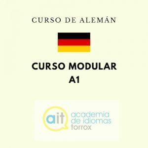 Cursos Modular Adultos A1