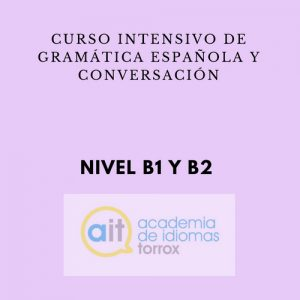 GENERAL INTENSIVE COURSE Level B1 (Grammar and Conversation)