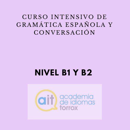 Curso semi-intensivo de gramática española y conversación (B1 y B2)