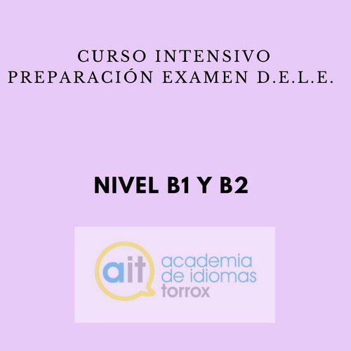 SPECIFIC INTENSIVE COURSES (D.E.L.E.) Level B2