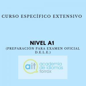 Curso Específico Extensivo Nivel A1 (Preparación para examen oficial D.E.L.E.)