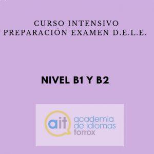 Curso intensivo preparación examen D.E.L.E. (B1 y B2)